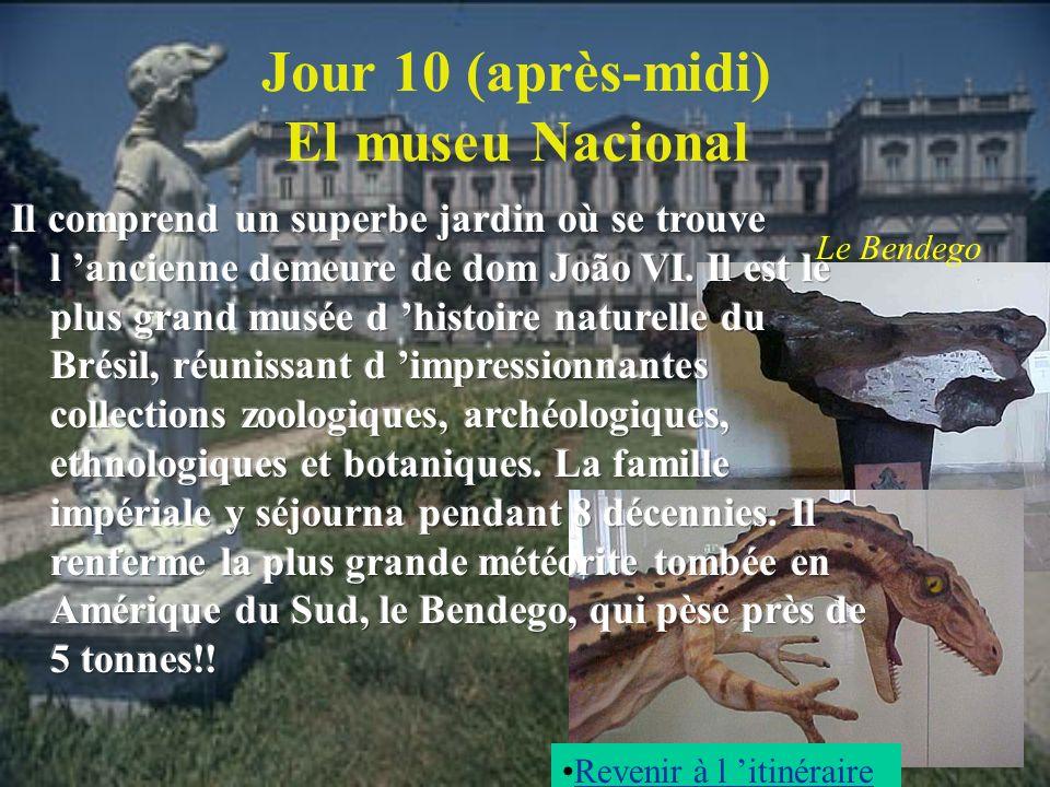 Jour 10 (après-midi) El museu Nacional