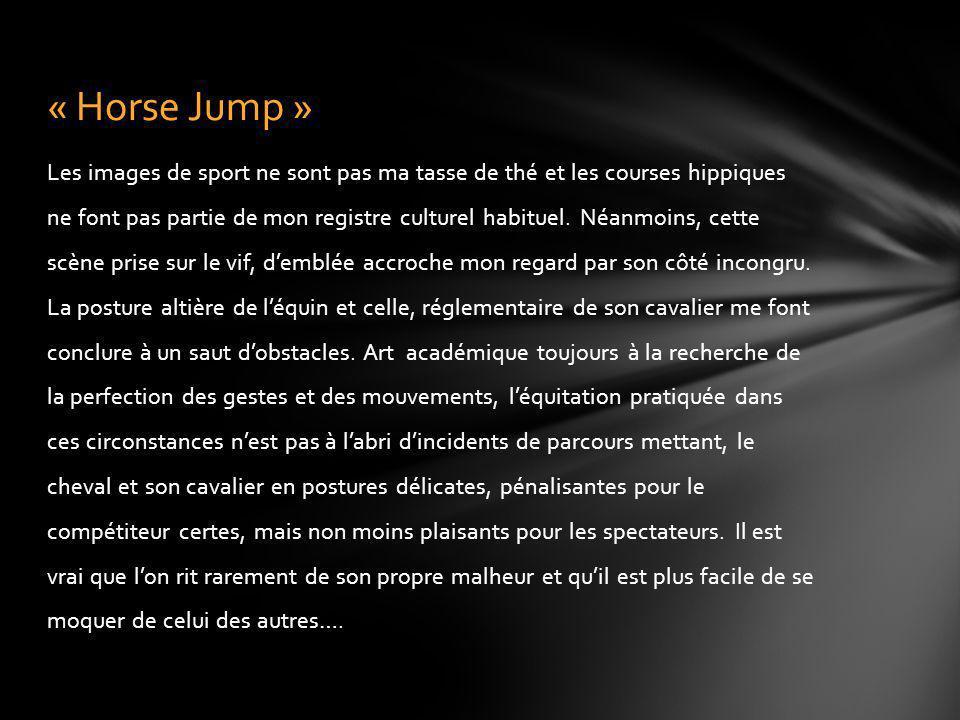 « Horse Jump »