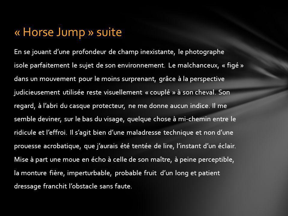 « Horse Jump » suite