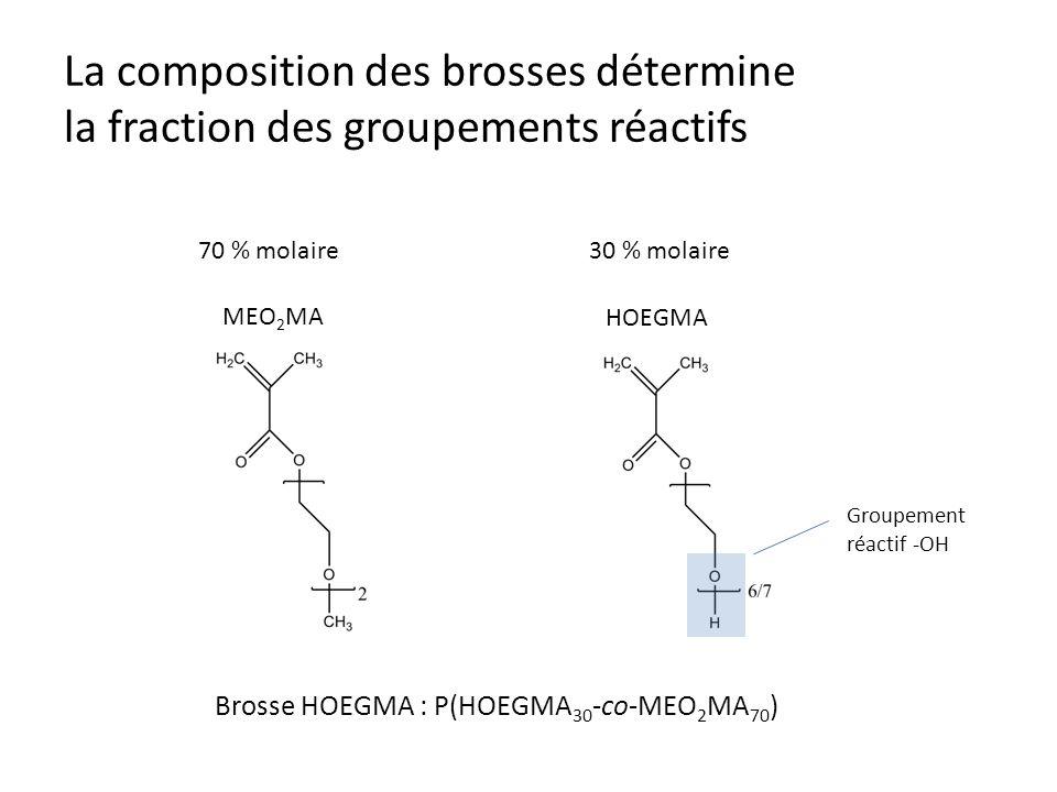 La composition des brosses détermine la fraction des groupements réactifs