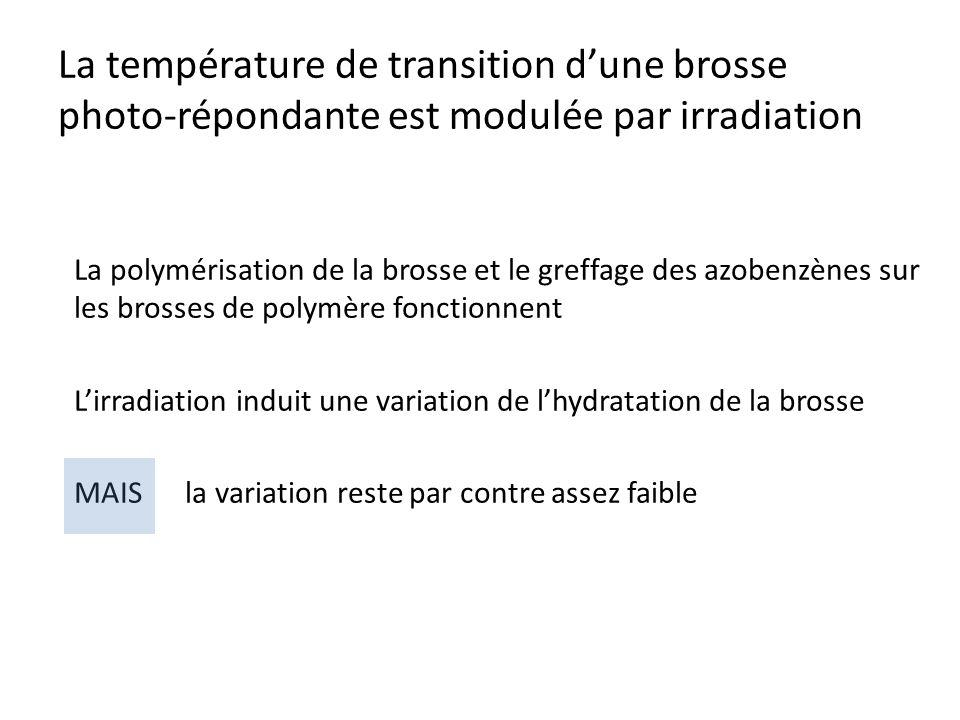 La température de transition d'une brosse photo-répondante est modulée par irradiation