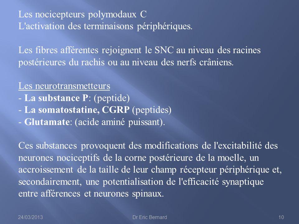 Les nocicepteurs polymodaux C L activation des terminaisons périphériques. Les fibres afférentes rejoignent le SNC au niveau des racines postérieures du rachis ou au niveau des nerfs crâniens.