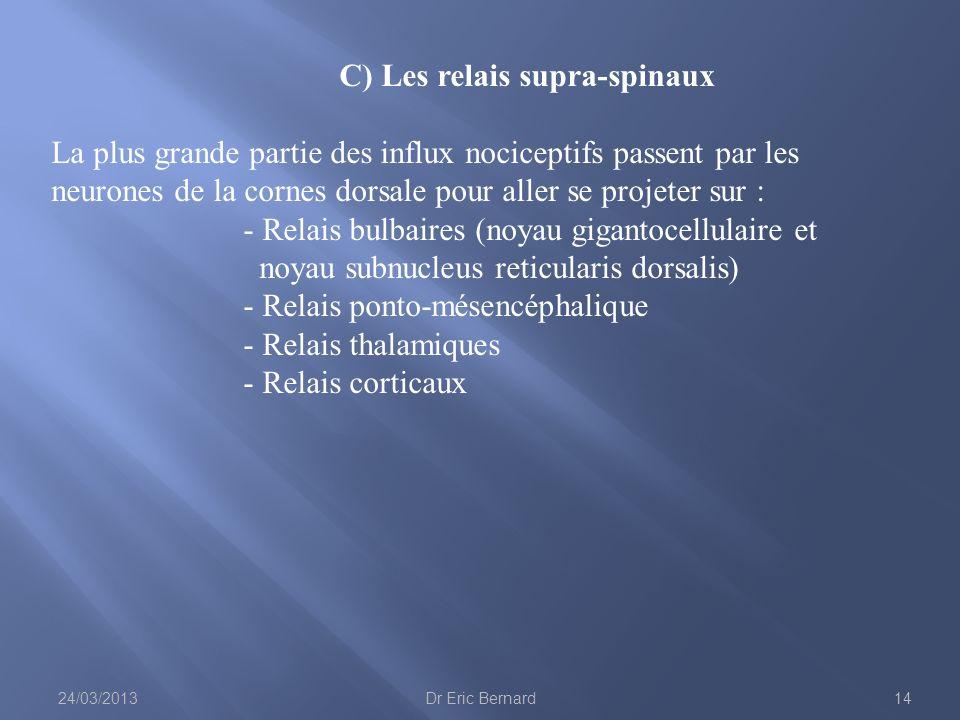 C) Les relais supra-spinaux