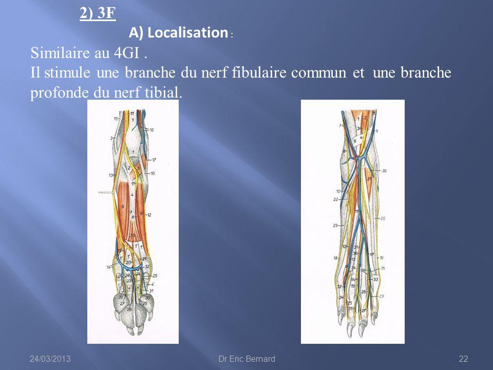 2) 3F A) Localisation : Similaire au 4GI .