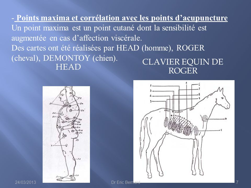 Points maxima et corrélation avec les points d'acupuncture