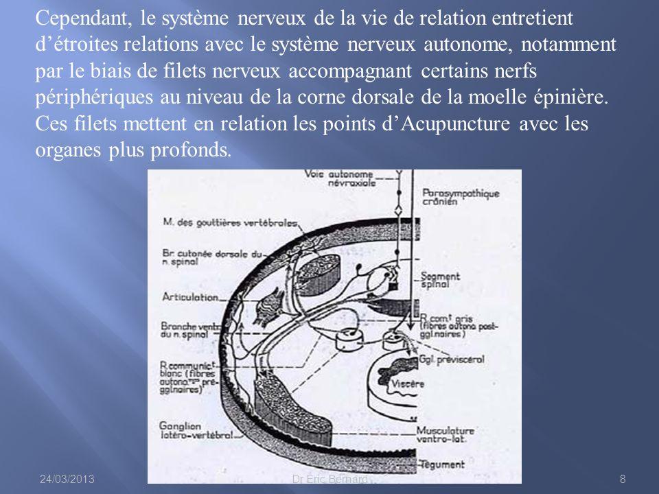 Cependant, le système nerveux de la vie de relation entretient d'étroites relations avec le système nerveux autonome, notamment par le biais de filets nerveux accompagnant certains nerfs périphériques au niveau de la corne dorsale de la moelle épinière. Ces filets mettent en relation les points d'Acupuncture avec les organes plus profonds.
