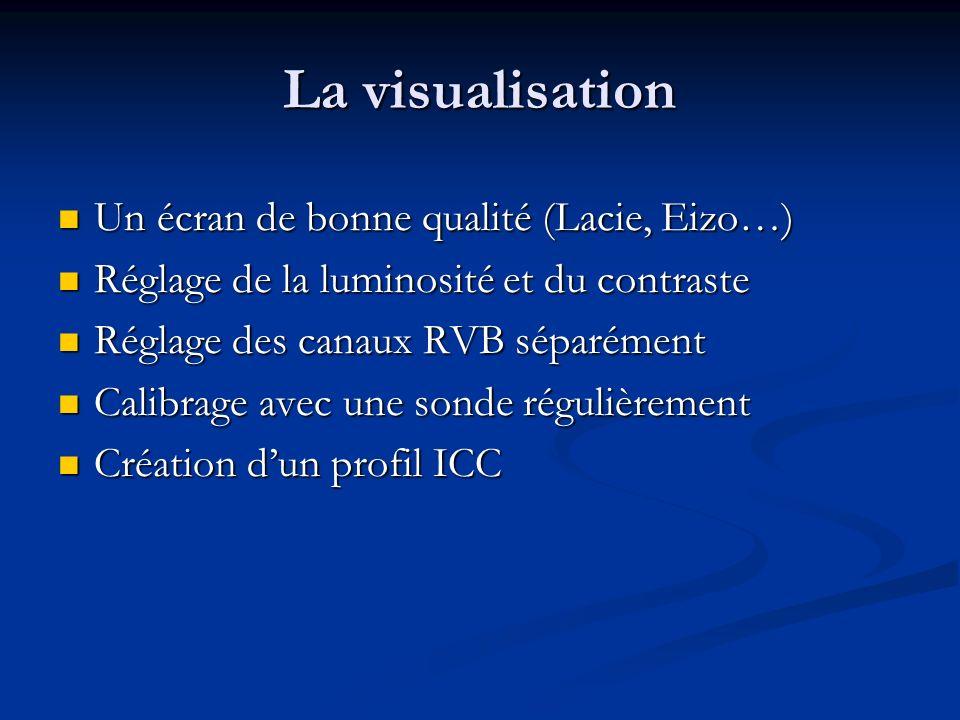 La visualisation Un écran de bonne qualité (Lacie, Eizo…)