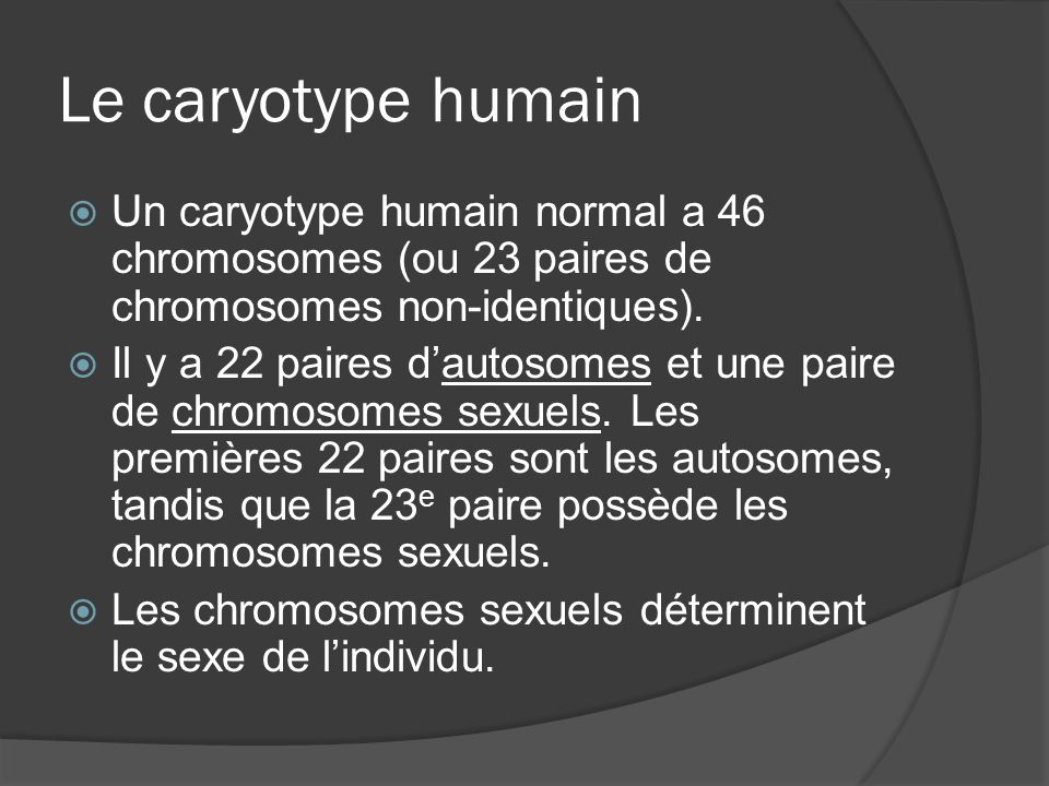 Le caryotype humain Un caryotype humain normal a 46 chromosomes (ou 23 paires de chromosomes non-identiques).