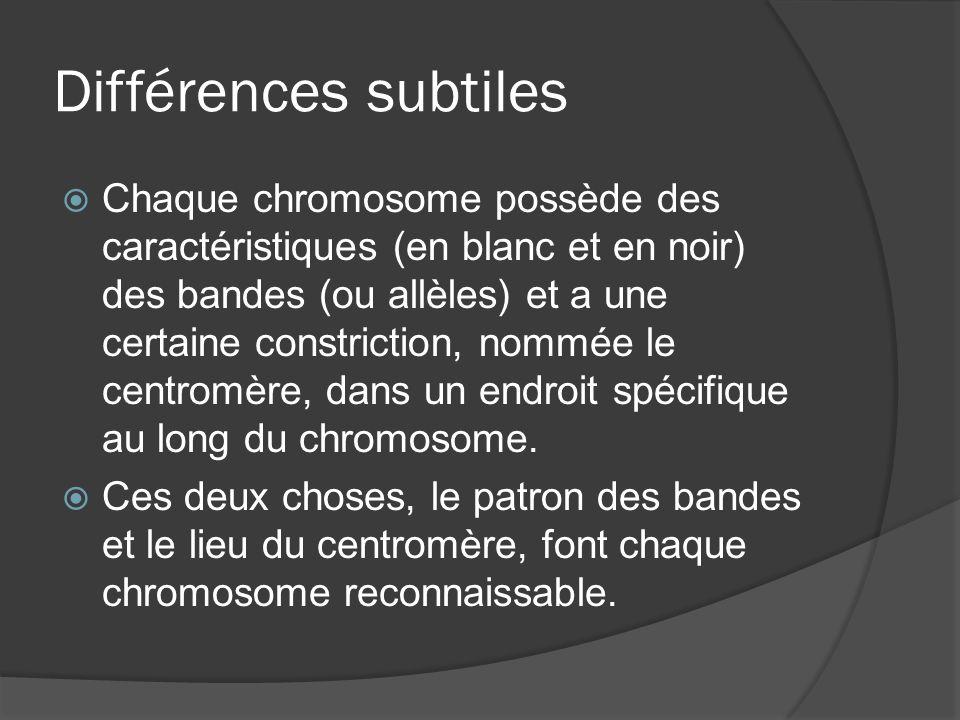 Différences subtiles