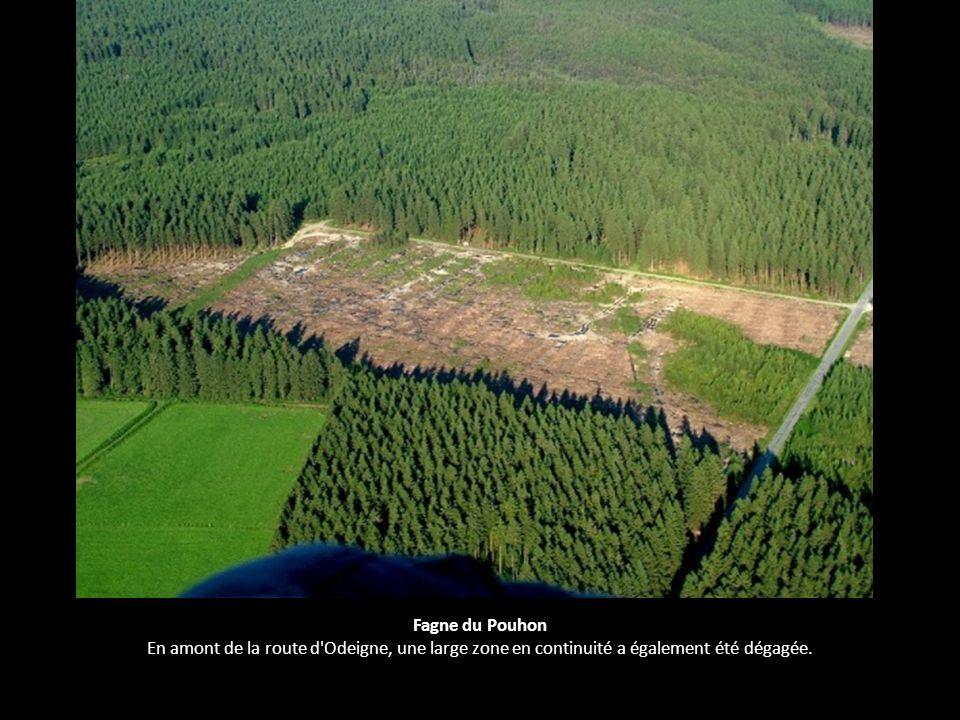Fagne du Pouhon En amont de la route d Odeigne, une large zone en continuité a également été dégagée.