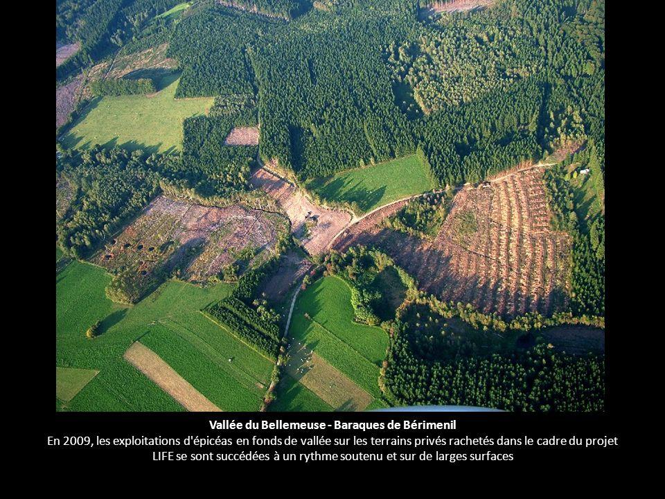 Vallée du Bellemeuse - Baraques de Bérimenil En 2009, les exploitations d épicéas en fonds de vallée sur les terrains privés rachetés dans le cadre du projet LIFE se sont succédées à un rythme soutenu et sur de larges surfaces