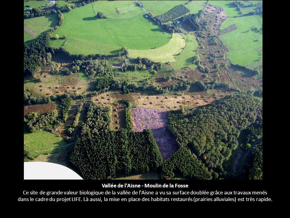 Vallée de l Aisne - Moulin de la Fosse Ce site de grande valeur biologique de la vallée de l Aisne a vu sa surface doublée grâce aux travaux menés dans le cadre du projet LIFE.