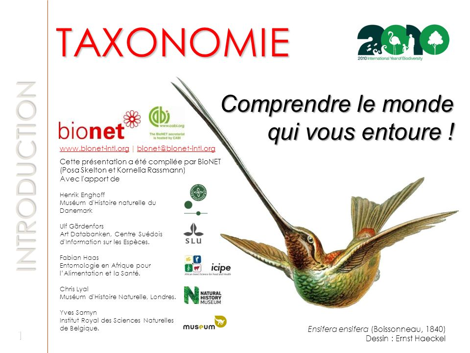 TAXONOMIE INTRODUCTION Comprendre le monde qui vous entoure !