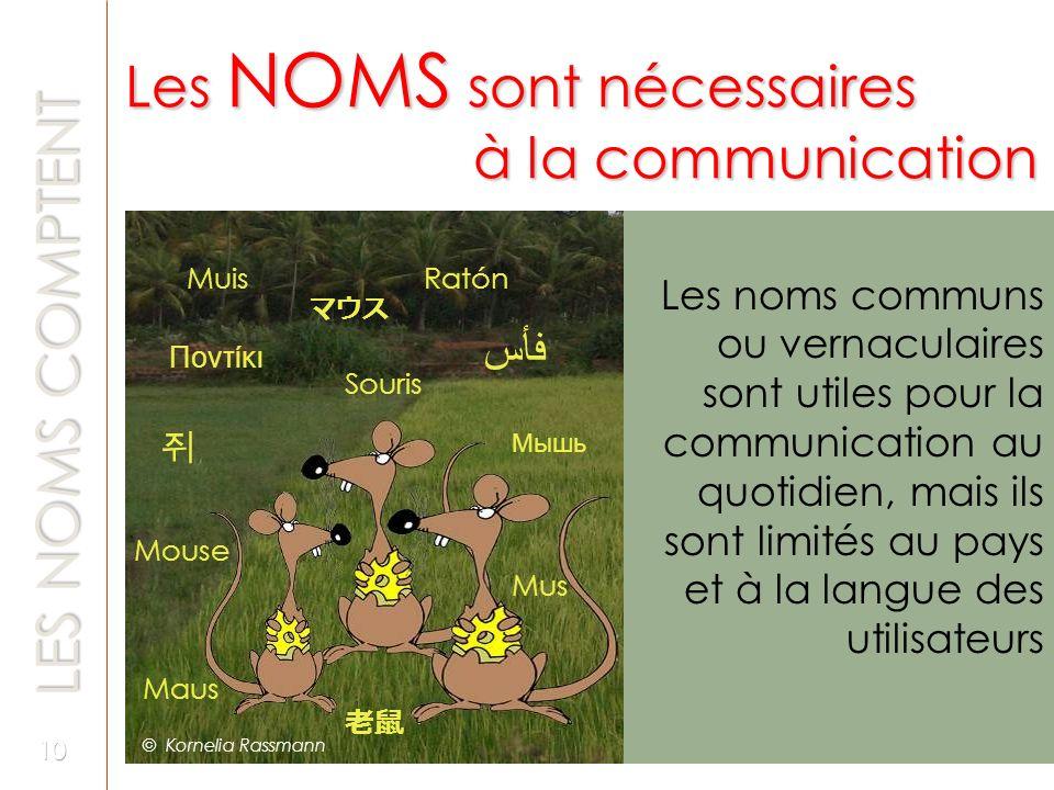 Les NOMS sont nécessaires à la communication