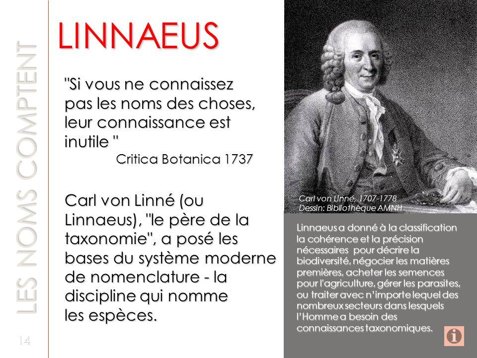 LINNAEUS LES NOMS COMPTENT