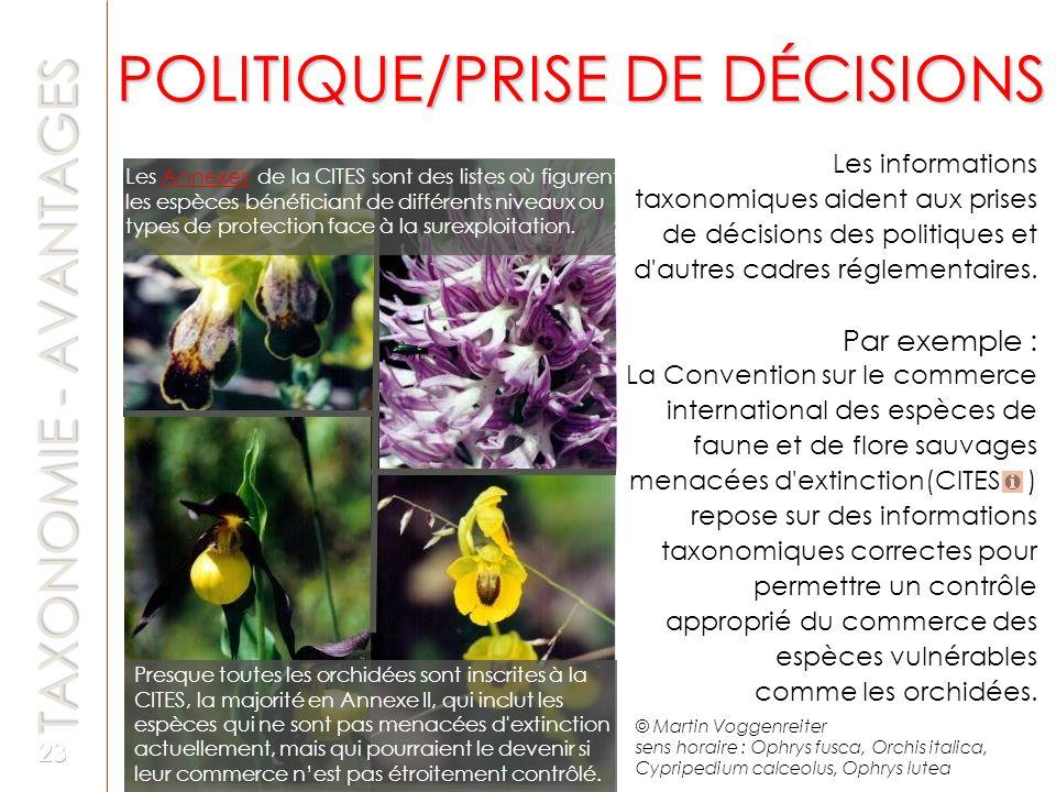 POLITIQUE/PRISE DE DÉCISIONS