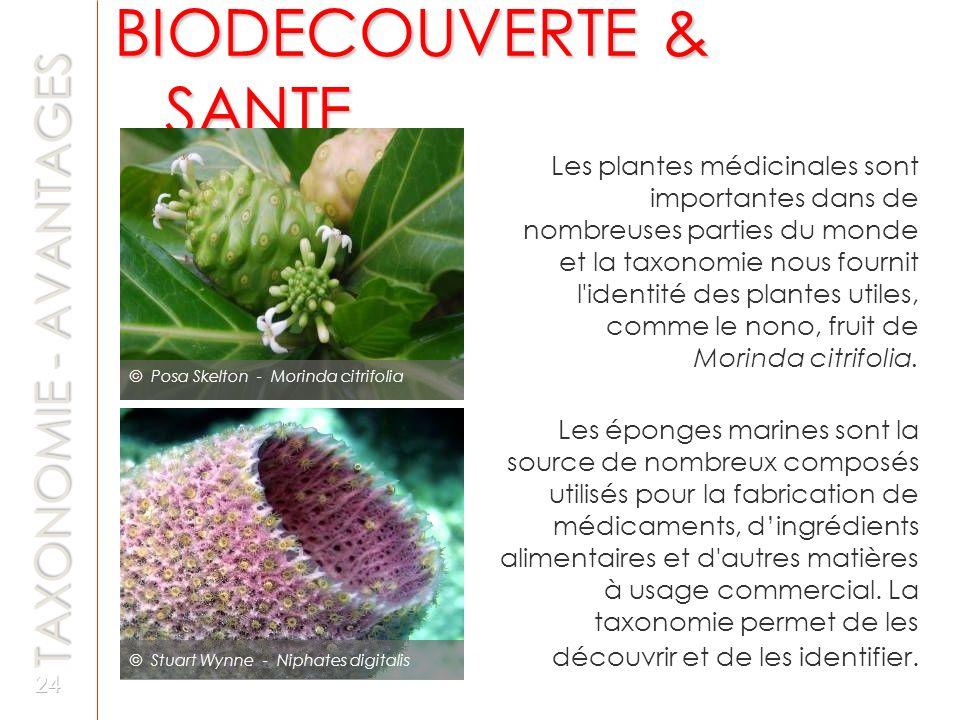 BIODECOUVERTE & SANTE TAXONOMIE - AVANTAGES
