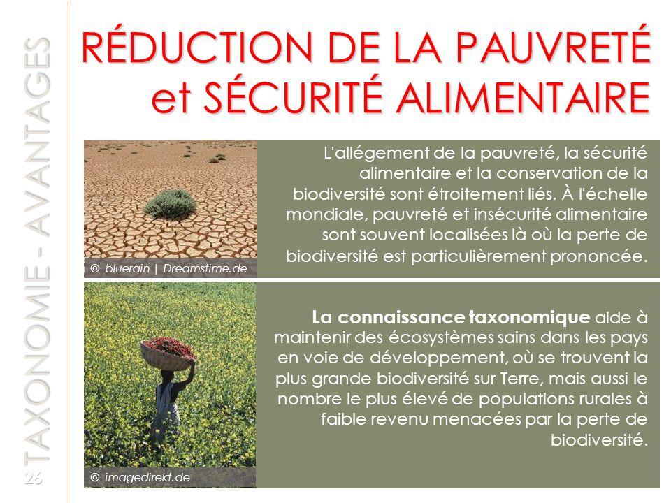RÉDUCTION DE LA PAUVRETÉ et SÉCURITÉ ALIMENTAIRE