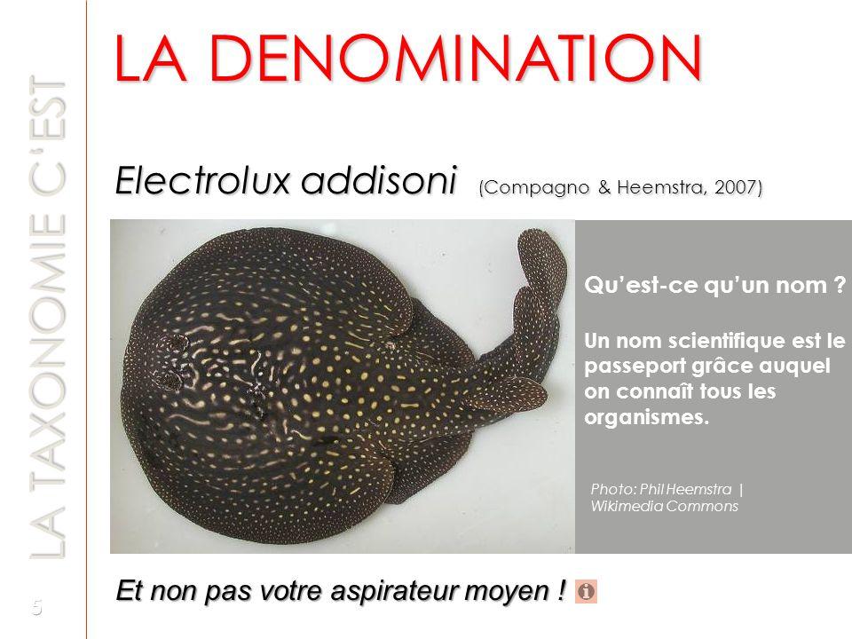 LA DENOMINATION LA TAXONOMIE C'EST