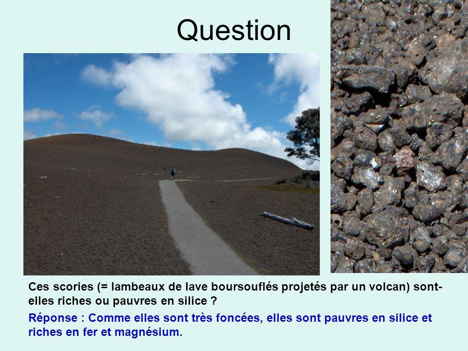 Question Ces scories (= lambeaux de lave boursouflés projetés par un volcan) sont-elles riches ou pauvres en silice