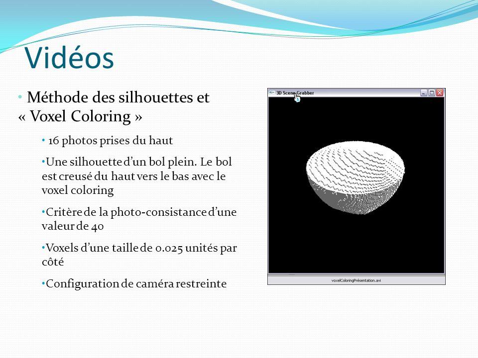 Vidéos Méthode des silhouettes et « Voxel Coloring »