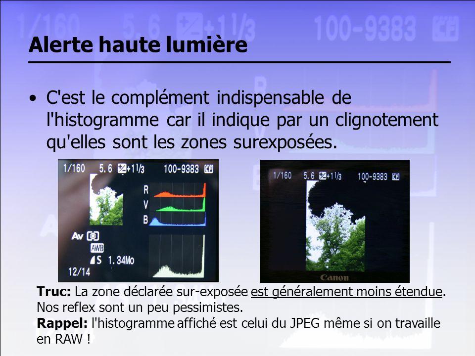 Alerte haute lumière C est le complément indispensable de l histogramme car il indique par un clignotement qu elles sont les zones surexposées.