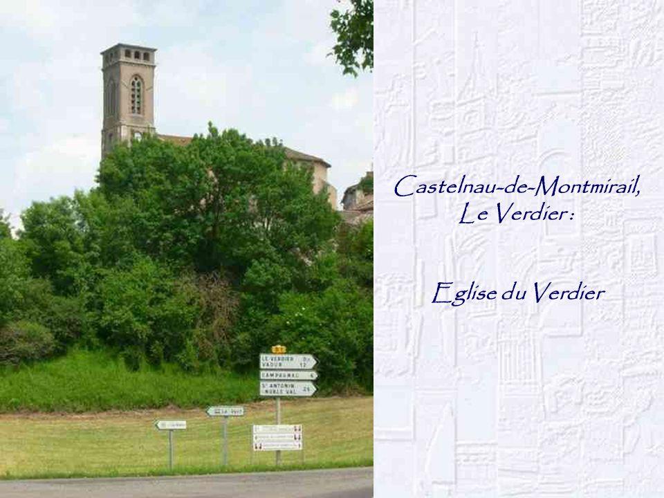 Castelnau-de-Montmirail,