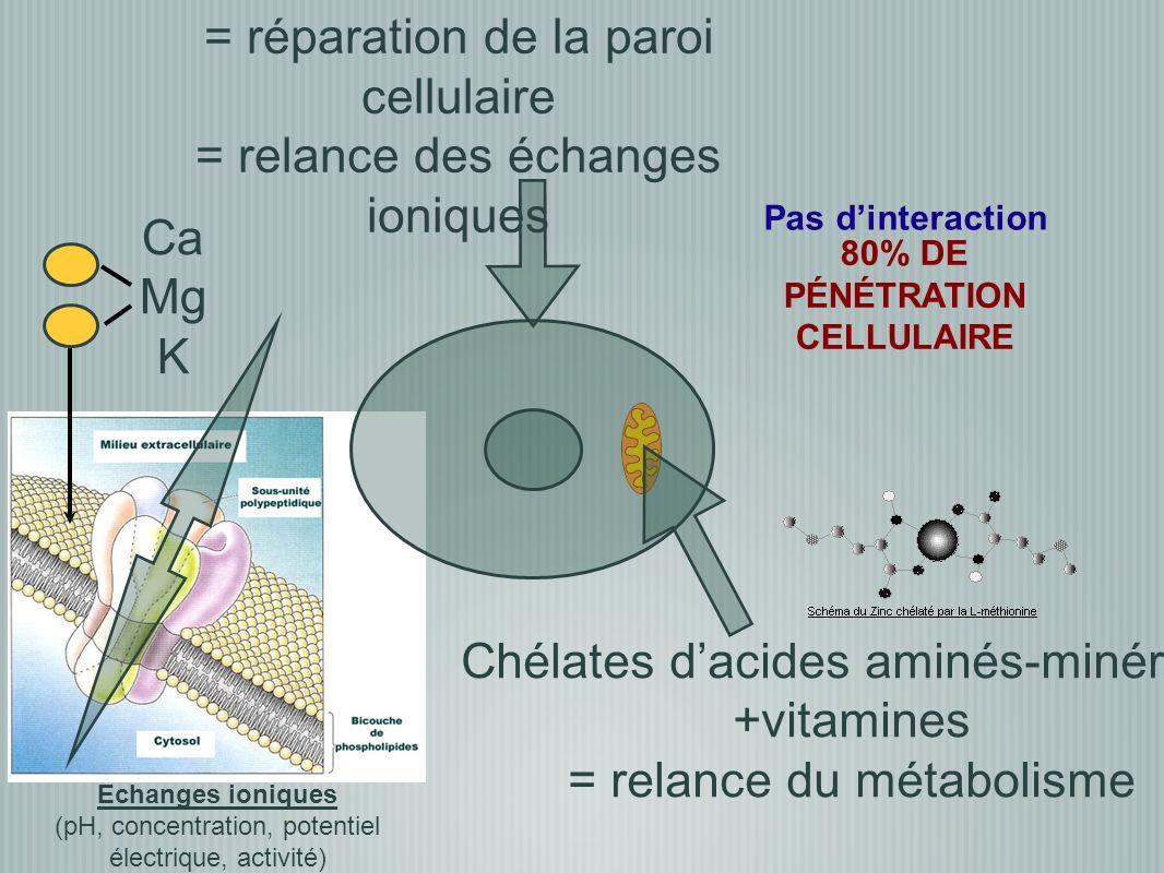 80% DE PÉNÉTRATION CELLULAIRE