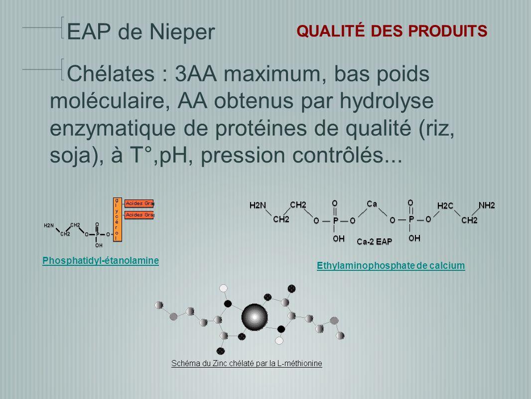 EAP de Nieper