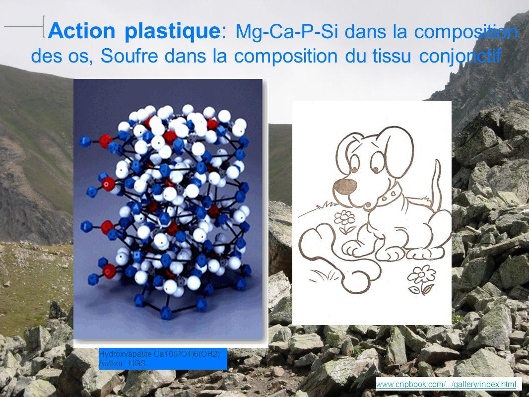 Action plastique: Mg-Ca-P-Si dans la composition des os, Soufre dans la composition du tissu conjonctif