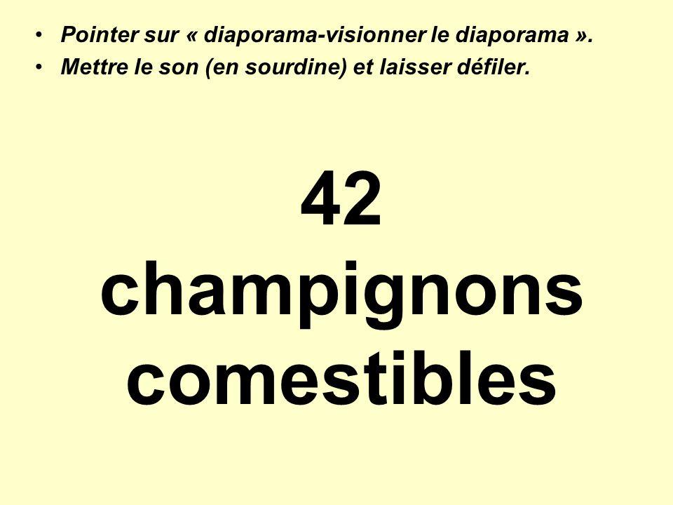 42 champignons comestibles