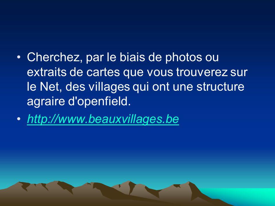 Cherchez, par le biais de photos ou extraits de cartes que vous trouverez sur le Net, des villages qui ont une structure agraire d openfield.