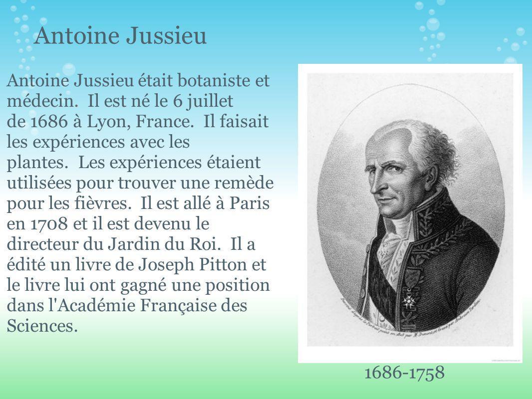 Antoine Jussieu