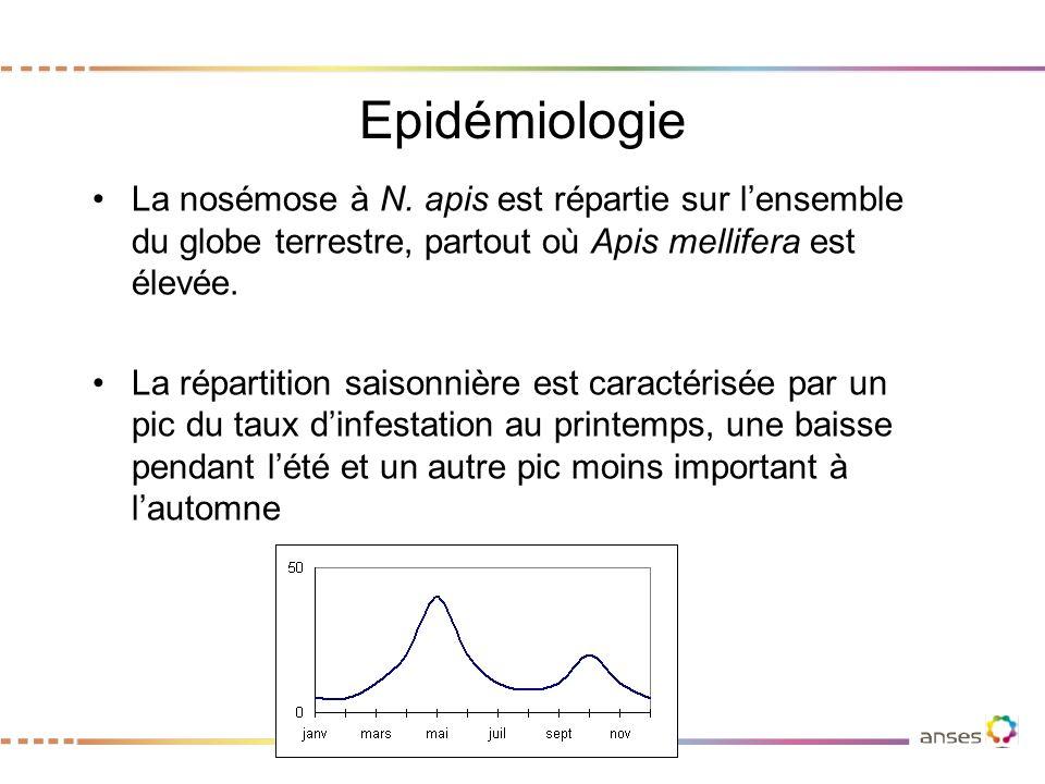 Epidémiologie La nosémose à N. apis est répartie sur l'ensemble du globe terrestre, partout où Apis mellifera est élevée.