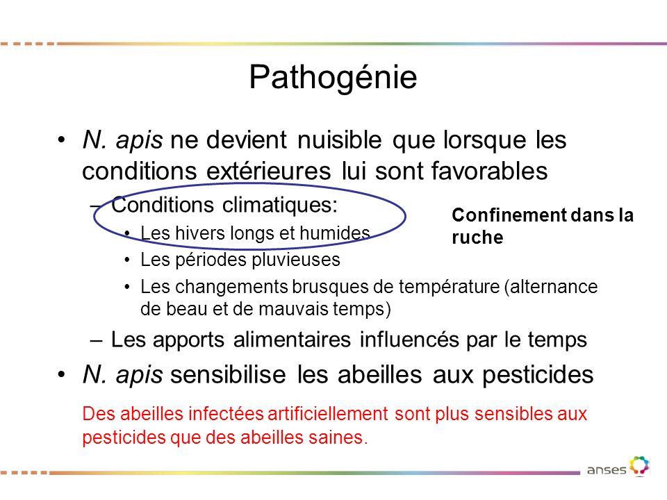 Pathogénie N. apis ne devient nuisible que lorsque les conditions extérieures lui sont favorables. Conditions climatiques: