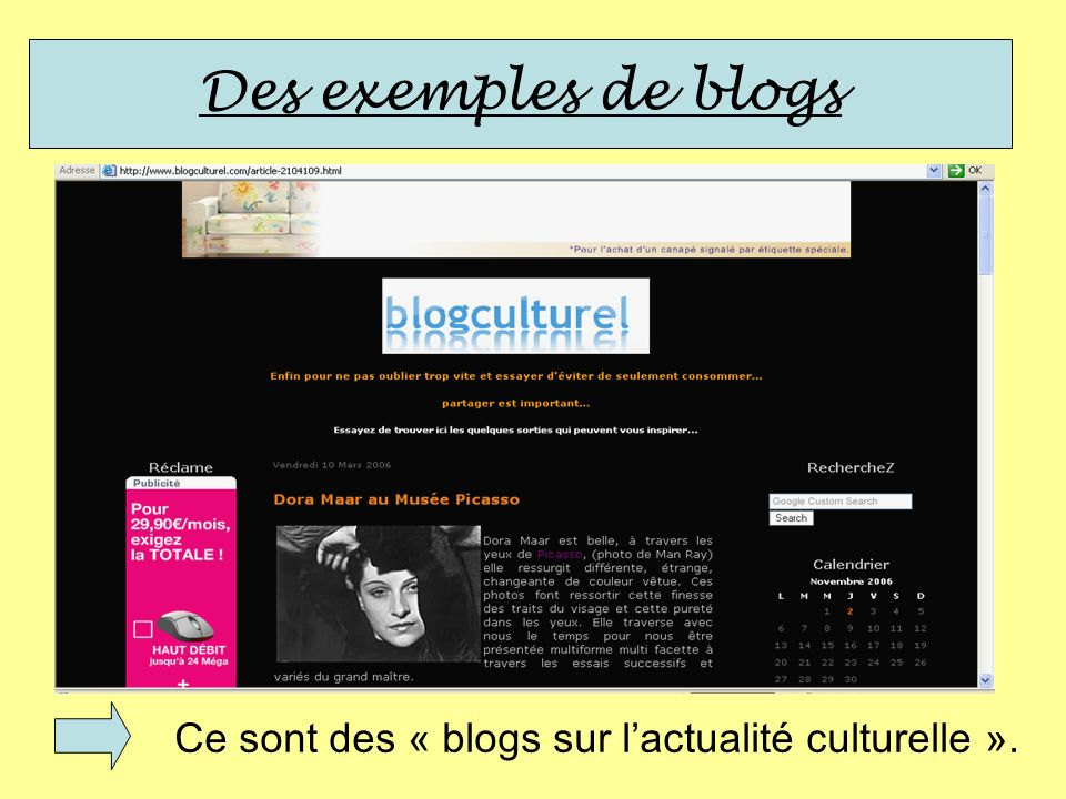Des exemples de blogs Ce sont des « blogs sur l'actualité culturelle ».