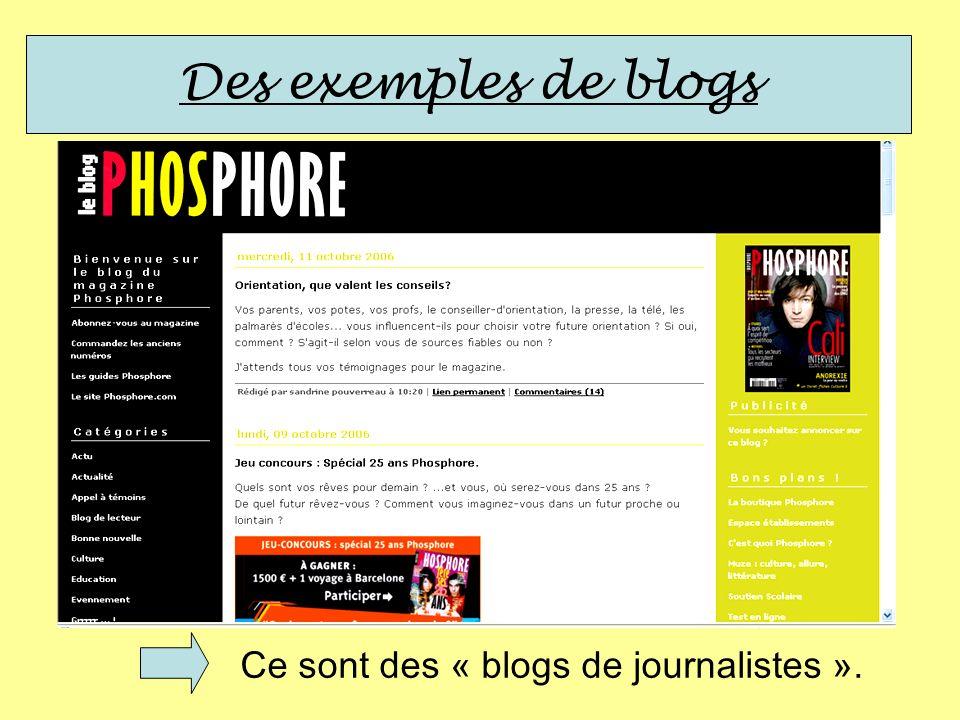 Des exemples de blogs Ce sont des « blogs de journalistes ».