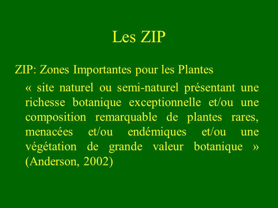 Les ZIP