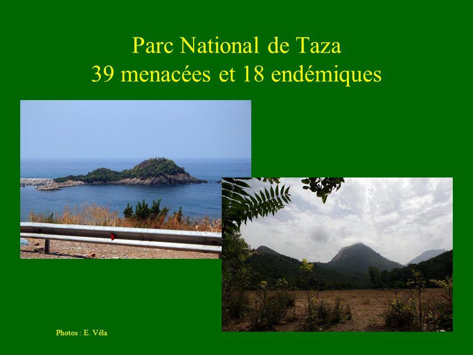 Parc National de Taza 39 menacées et 18 endémiques