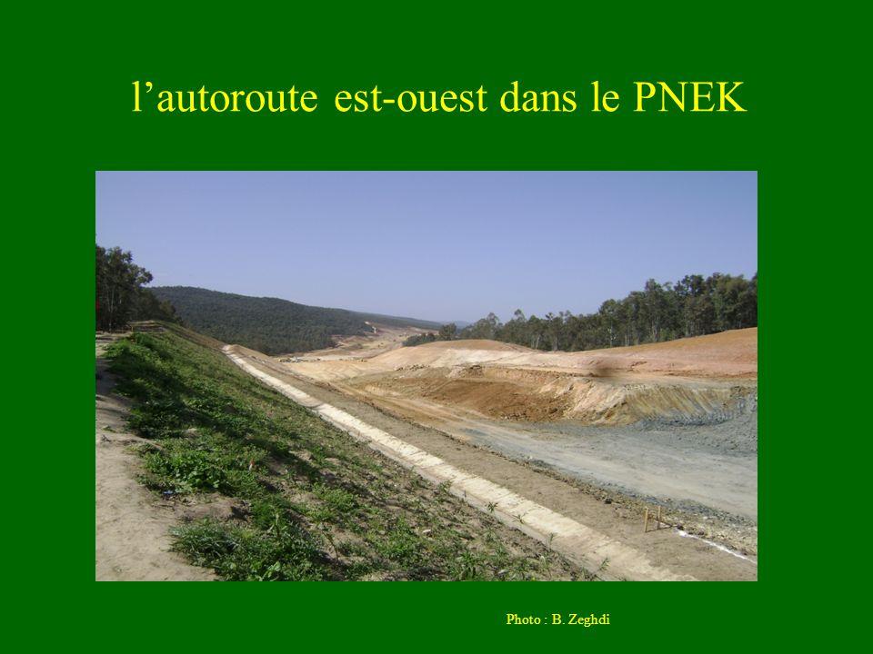 l'autoroute est-ouest dans le PNEK