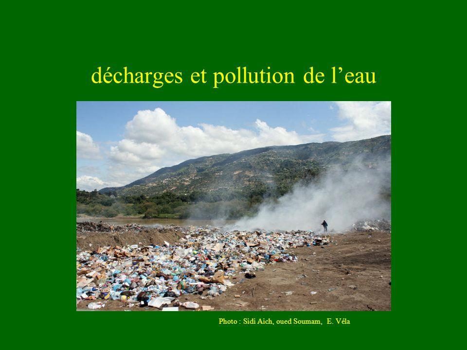 décharges et pollution de l'eau