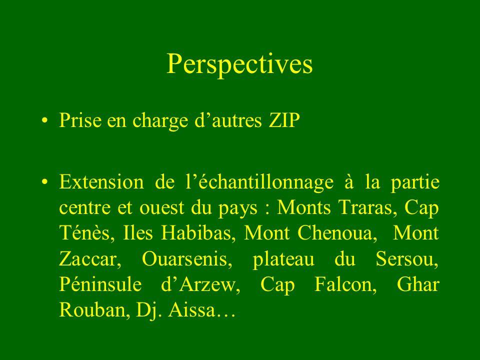 Perspectives Prise en charge d'autres ZIP
