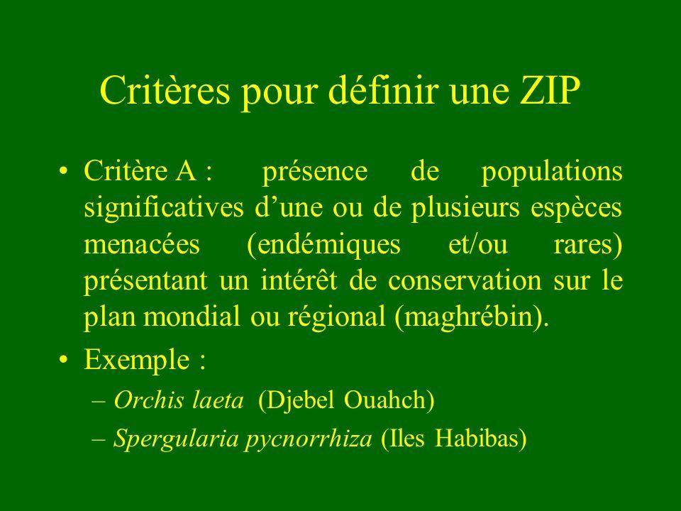 Critères pour définir une ZIP