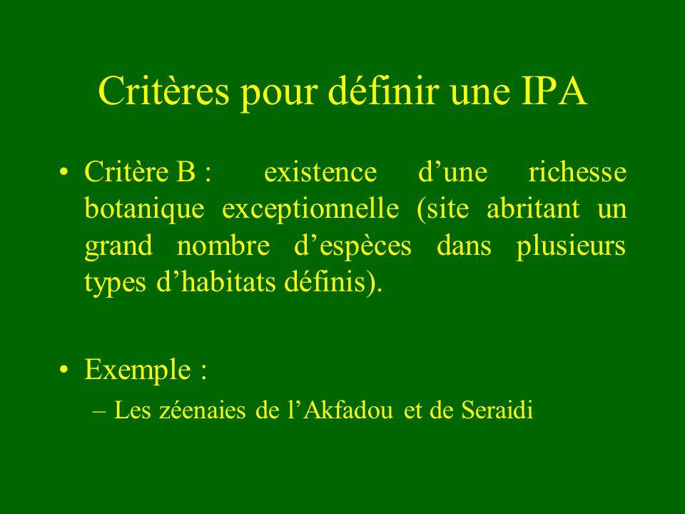 Critères pour définir une IPA