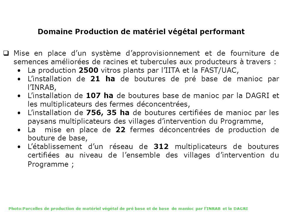 Domaine Production de matériel végétal performant