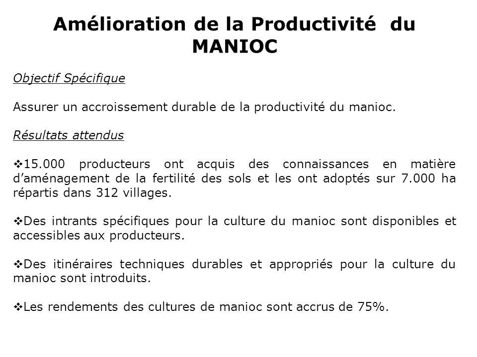 Amélioration de la Productivité du MANIOC