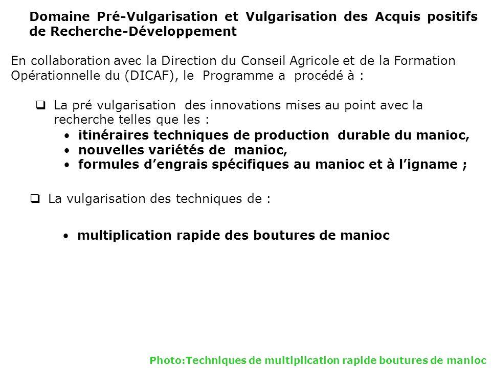 Opérationnelle du (DICAF), le Programme a procédé à :