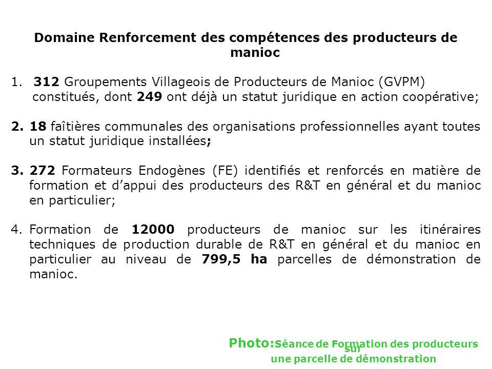 Domaine Renforcement des compétences des producteurs de manioc