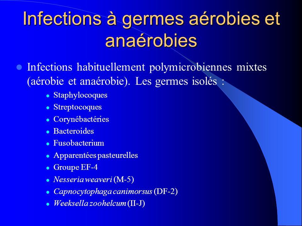 Infections à germes aérobies et anaérobies