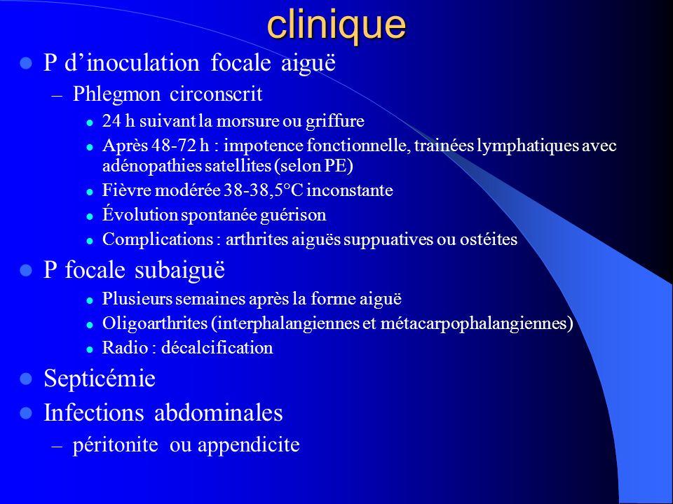 clinique P d'inoculation focale aiguë P focale subaiguë Septicémie